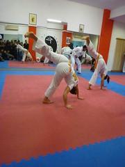 exhibición de Capoeira
