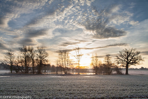 trees lake cold water clouds sunrise fishing pond frost worcestershire worcester