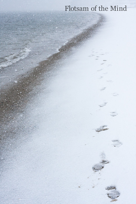 Footprints on a Snowy Beach - Flotsam of the Mind