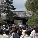 0404_chiyoda-28