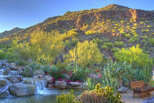 sunset cactus stream saguaro camelbackmountain