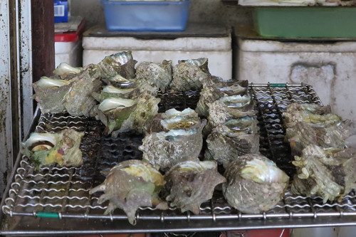 Grilled turban shellfish houses