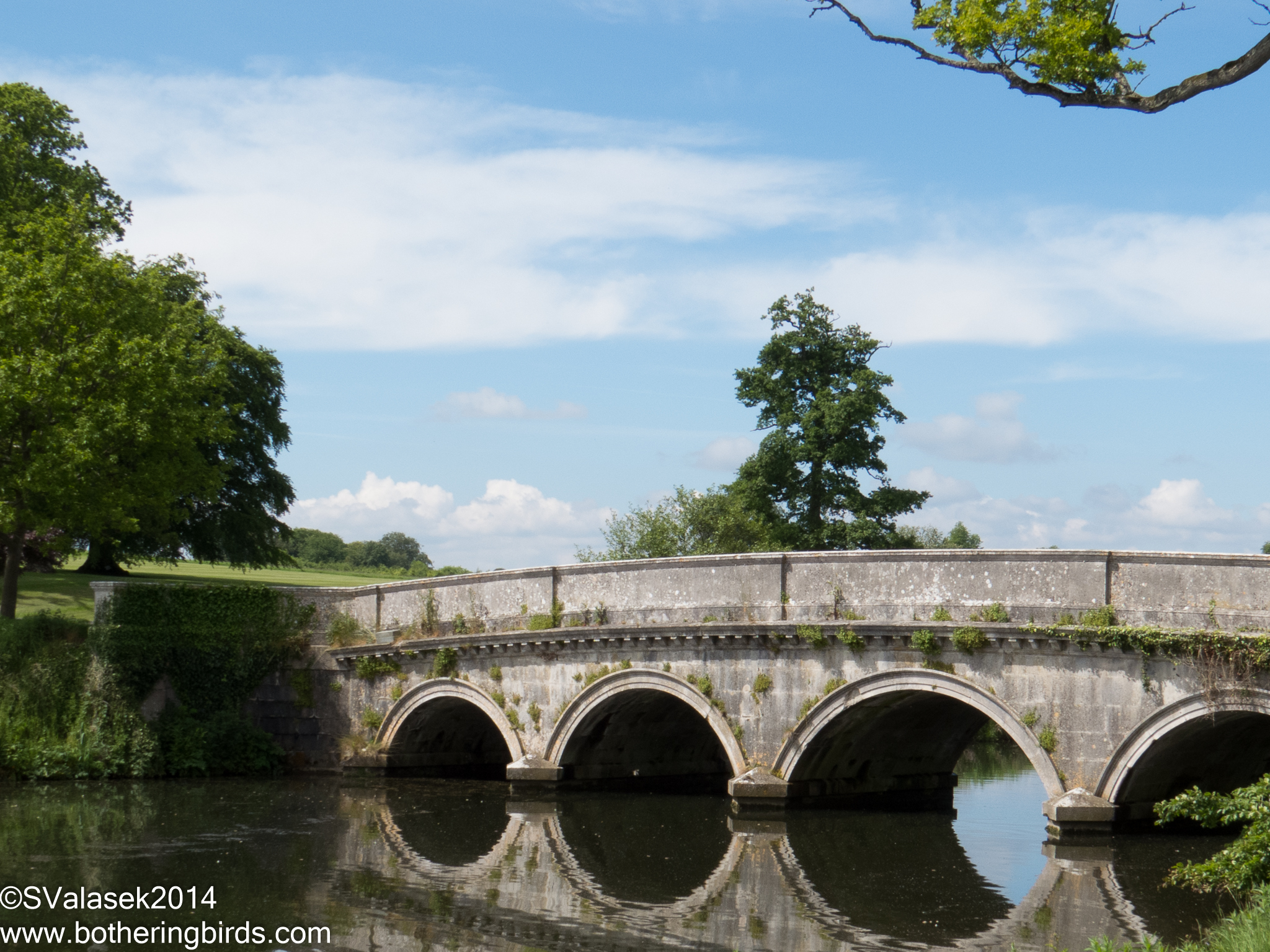 Bridge at Carton House