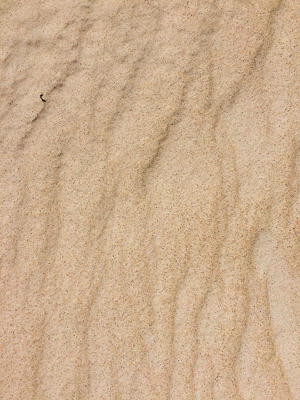 tasmania-henty-sand-dunes