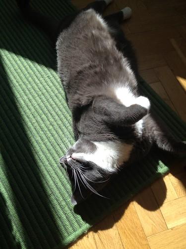 Sona in a sun spot
