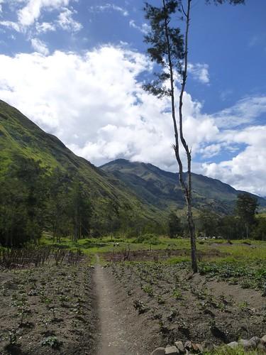 Papou13-Wamena sud-Sugokmo (68)