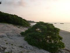 ニシ浜3(夕方)