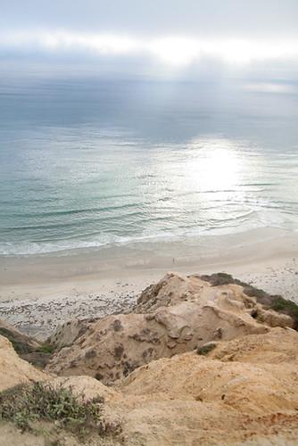 Scripps Coastal Reserve
