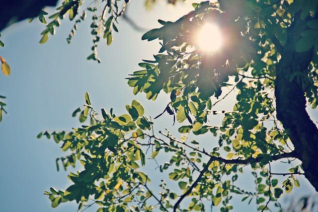 Sunny I StylebyCharlotte.com