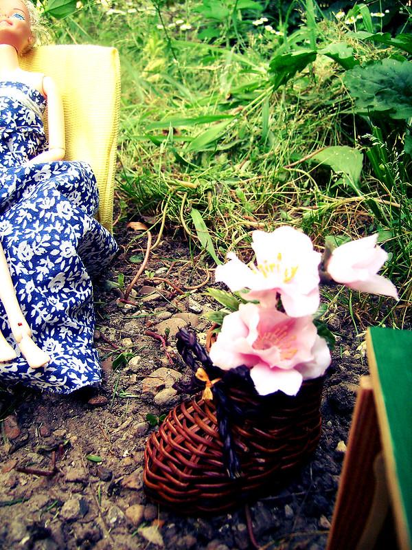 my secret garden)