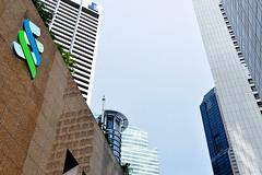 Singapore - Urban Jungle