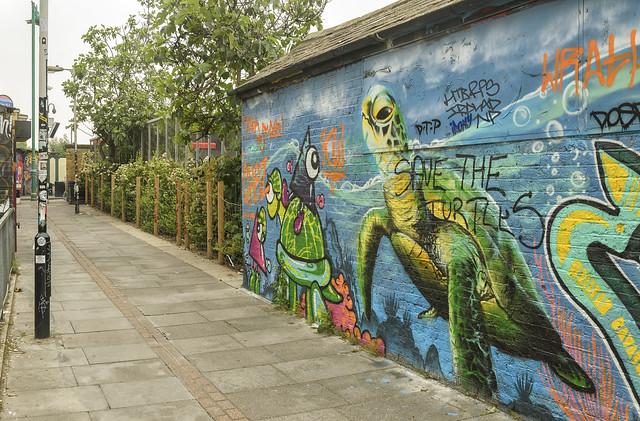 Save the Turtles - IRONY - ARTISTA