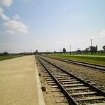 Il campo di sterminio di Birkenau