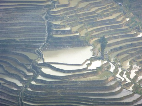 Yunnan13-Yuanyang 24-Bada (43)1