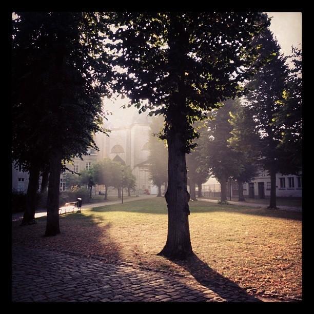 Goeiemorgen Vlierbeek! #AbdijVanVlierbeek