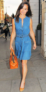 Pippa Middleton Denim Dress Celebrity Style Women's Fashion