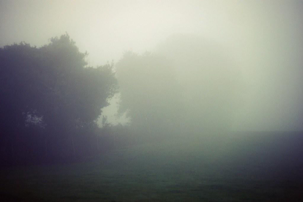 mist-16
