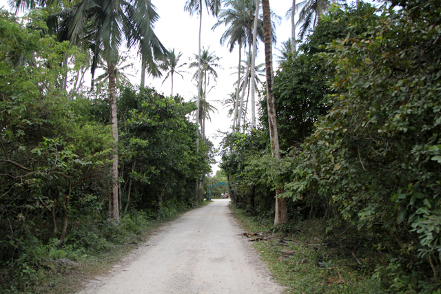 Arriving at Jozani Forest in Zanzibar
