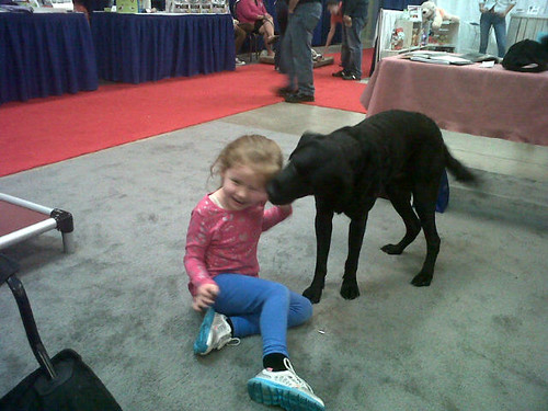 Puck welcoming a visitor at home show.