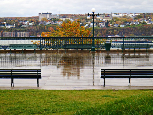 levis canada stlawrence saintlaurent river benches lampost autumn riverside quebeccity frenchcanada canadian sandraleidholdt québec ca color fall colors leaves trees branches efterår φθινόπωρο herfst lautomne elotoño outono 秋 sonbahar foliage usa america american coloresotoñales us fallcolours southshore lévis terrassedufferin woodenwalkway viewpoint view quebec easterncanada wet
