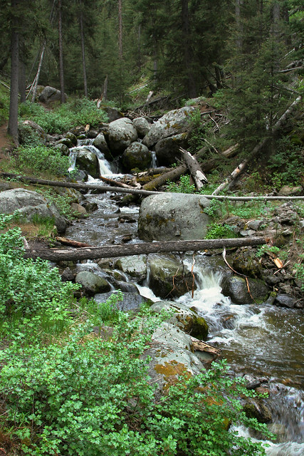 10548686233 3111ac6aaf z Lost Creek Falls Trail: Short Trail to Solitude