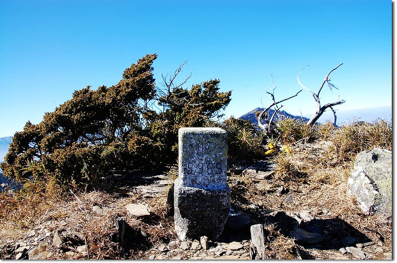 牧山三等三角點(# 5969 Elev. 3241 m) 1