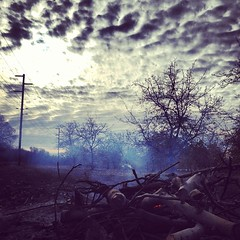 Good time for a fire #winter #ranch #trees #tagsforlikes #instanature #instagood #instasky #outdoors #orchards #walnuts #agriculture #sunset #skyporn #sunrise #fire #campfire #warm #farm #likeforlike #country #cloudporn #californiaagriculture #buttecounty