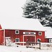 Red barn in snow by Becky❤Sue
