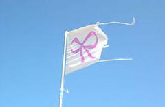 Una bandiera con un fiocco rosa – di Paola Testaferrata