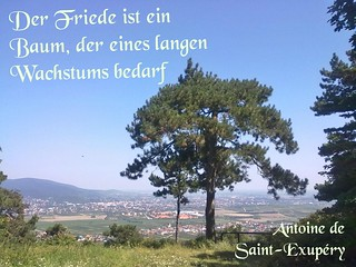 Der Friede ist ein Baum
