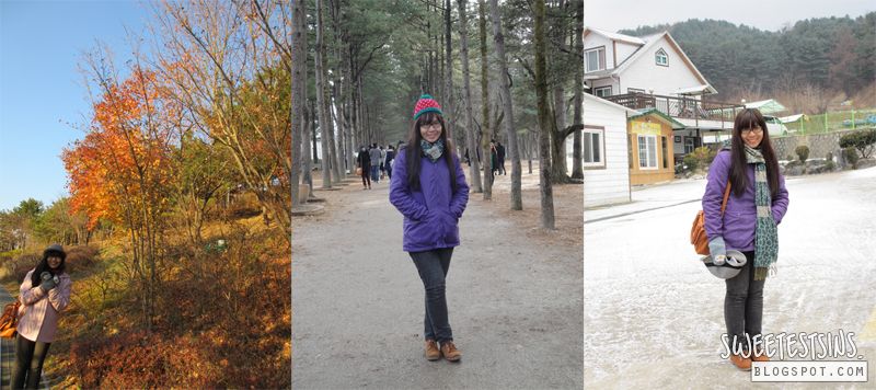namsan park and nami island first kiss