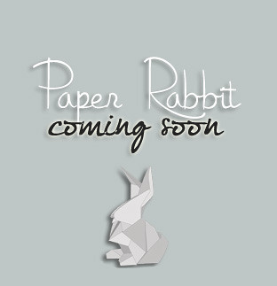 Paper Rabbit Skins Coming Soon