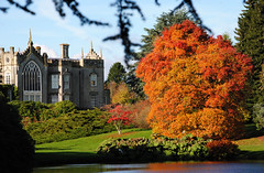 Autumn at Sheffield Park Gardens
