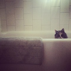 She'll sit here in the tub for a long time waiting for us to turn the faucet on.