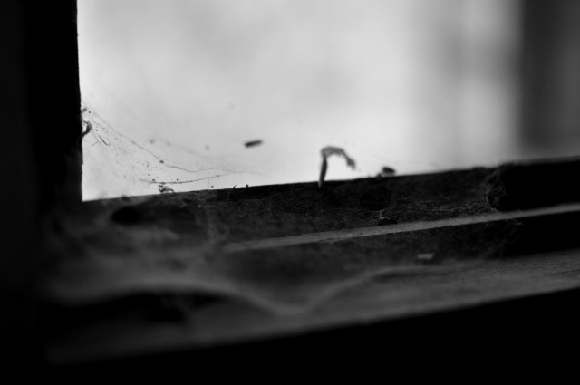 Beelitz_Heilstätten_2014_61
