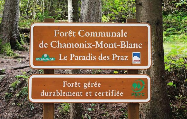 foret communale chamonix mont blanc