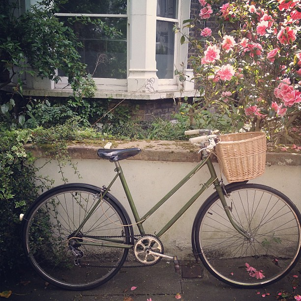My bike looking handsome with its basket on today.