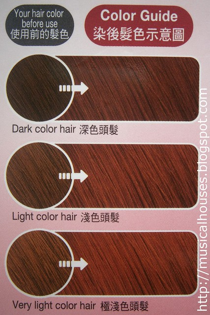 Kao Liese Bubble Hair Colour Jewel Pink colour chart