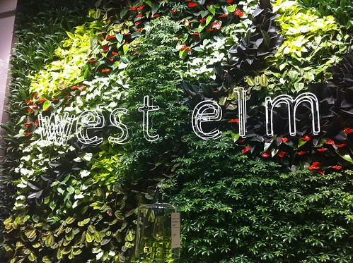 West Elm opening