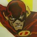 The Flash Detail