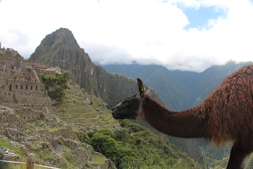 Machu Picchu 2013-ground maintenance crew. Gonesomewhere.com