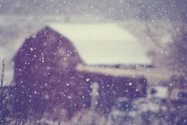 December 7