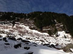 Green Mtn Summit - not attained