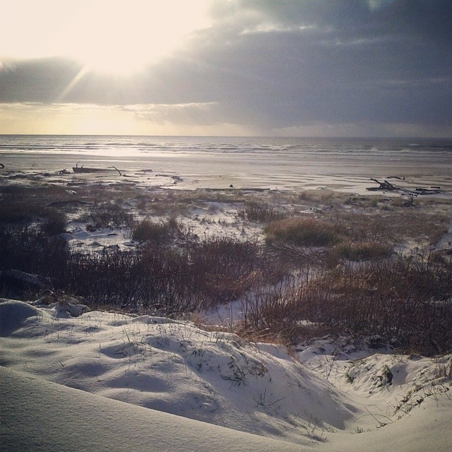A brief glimpse of the sun #snowdayatthebeach #coastwinter
