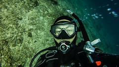 underwater diving, recreation, outdoor recreation, marine biology, scuba diving, divemaster, extreme sport, diving equipment, underwater,