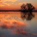 Reflections IMG_0252 by Rob DeGraff