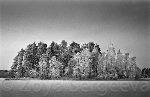 032 by Zoya Sergeeva