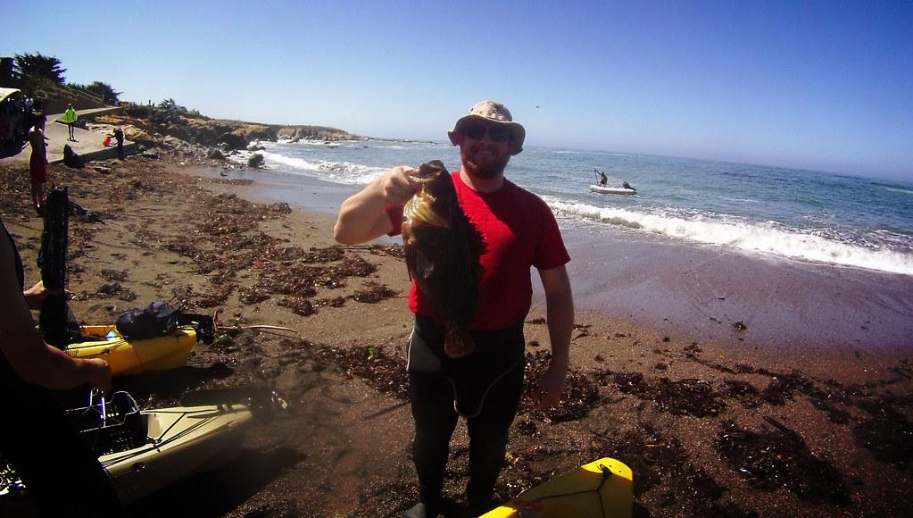 PB Rockfish