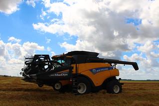 Bout to start last barley field!