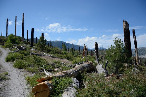 Damage from the Rainbow Fire